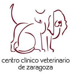 centro medico veterinario